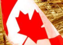 گزارش تحلیلی وضعیت مهاجران در بازار کار کانادا: بخش اول – شمای کلی