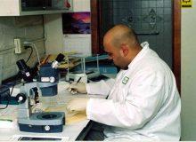 نکاتی اجمالی درباره رشته علوم آزمایشگاهی – بخش دوم: تکنسین علوم آزمایشگاهی Medical Laboratory Technician