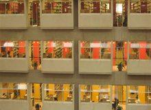 دانشگاه یورک در یک نگاه
