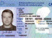 نکاتی تکمیلی درباره دریافت گواهینامه رانندگی انتاریو