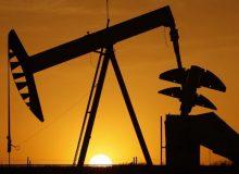 تلاطم بازار کار البرتا در پی کاهش شدید قیمت نفت