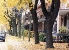 چرا مونترال شهری ایدهآل برای تازه واردان به کانادا است؟ (بخش دوم)
