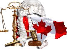 چه کسانی می توانند پرونده مهاجرت شما به کانادا را نمایندگی کنند؟