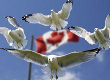 آیا متقاضی مهاجرت به کانادا ملزم به اقامت، زندگی و کار در استان خاص است؟