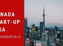 ویزای استارت آپ: مسیر مهاجرت کانادا برای کارآفرینان بااستعداد