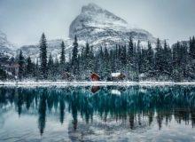 صدور 4750 دعوتنامه برای متقاضیان«برنامه تجربه کانادایی»