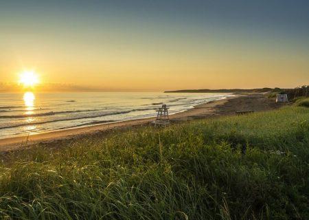 صدور 161 دعوتنامه در جدیدترین انتخاب استانی جزیره پرنس ادوارد